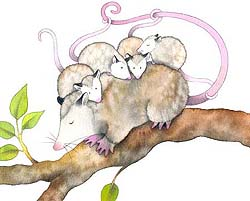 Ilustración de Nora Hilb