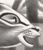 Fragmento de un dibujo de David Pugliese