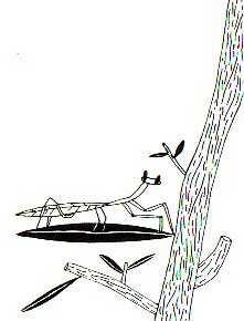 04-MantisHoja