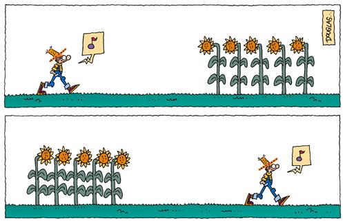 jardinerop
